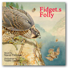 book fidgets folly cover