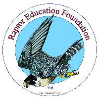logo raptor educ foundation